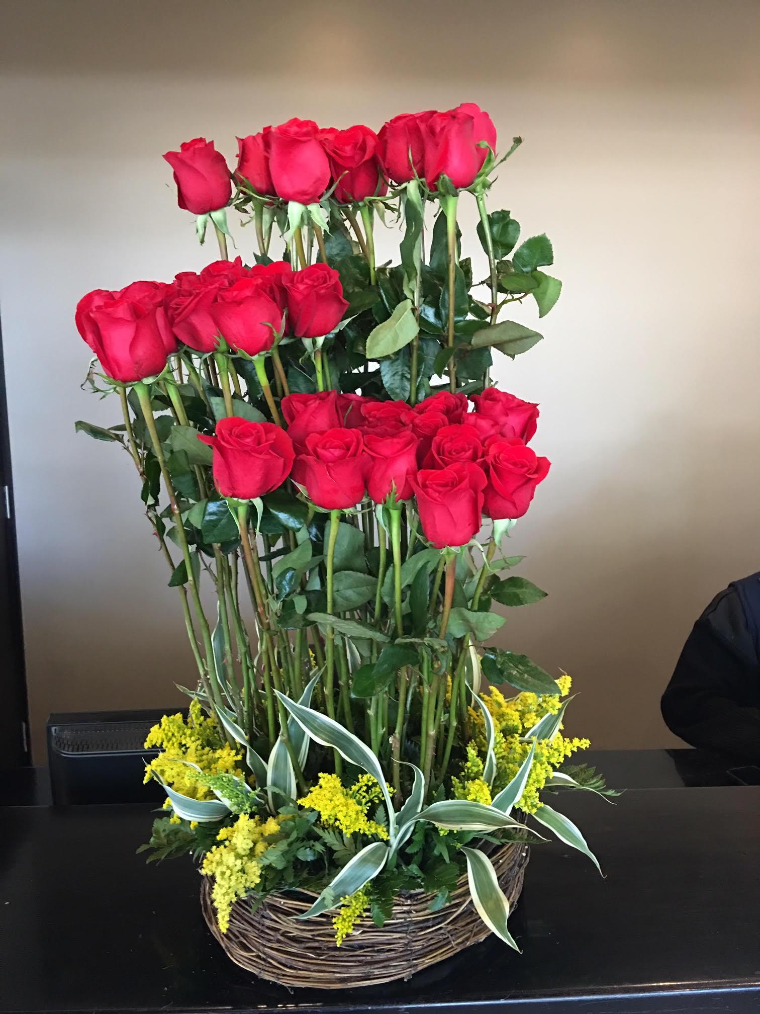Dos Docena de rosas Image